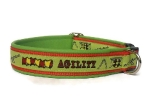 Agility lime - Breite ca. 2,7 cm incl. Lederunterfütterung
