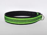 Halsband aus beidseitig gummiertem apfelgrünem Gurtband - Breite ca. 2,7 cm (incl. Leder)