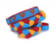 Agility-Zergelleine Superman