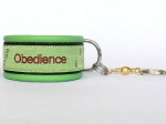 Nummer 14 - Obedience lime