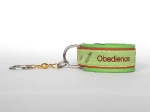 Nummer 28 - Obedience lime