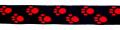 Pfötchen Schwarz-Rot - 25 mm