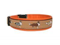 Australien Shepherd hellbraun - Größe 43 - 46 cm - Breite ca. 3,4 cm incl. Lederunterfütterung - Gurtband braun (25 mm) - Leder orange