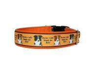 """Border Collie - Simply the Best!"" - Größe 42 - 45 cm - Breite ca. 3,2 cm incl. Lederunterfütterung - Gurtband braun (25 mm) - Leder orange"