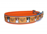 Zugstopp Border Collie - Simply the Best! - individuell verstellbar - Halsumfang bis 43 cm